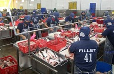 Tra export value rises, firms cautious
