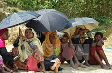 Myanmar, Bangladesh begin talks to repatriate Rohingya people
