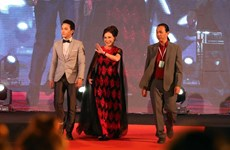 Film festival begins in Da Nang