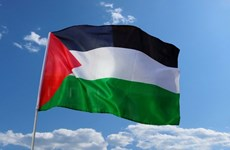 Vietnam supports solidarity with Palestinian people