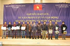 Vietnamese workers in RoK receive consultations