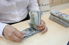 Reference exchange rate goes down 3 VND