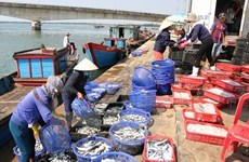 Agro-forestry-fishery exports hit 33 billion USD