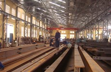 Vietnam-Japan steel venture officially opens