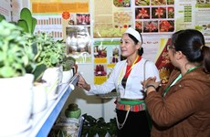 Time for Vietnam's agriculture go hi-tech