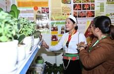 Time for Vietnam's agriculture go hi-tech