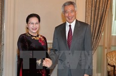 Chairwoman's Singapore, Australia trip concludes NA's eventful year