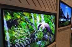 Exhibition shows biodiversity of Vietnam, Taiwan