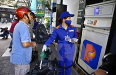 Petrol prices remain unchanged, oil prices increase slightly