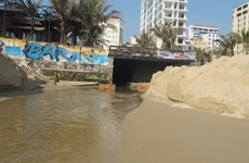 Da Nang city fines owner of polluting project