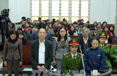 Hanoi court opens trial on ex-deputy director of agriculture department