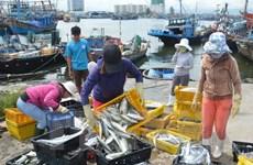 Urgent measures taken to respond to EU's warning on IUU fishing