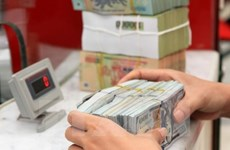 Reference exchange rate goes down by 2 VND
