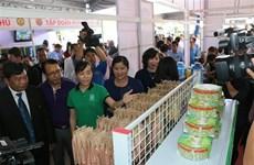 CLV Development Triangle Area promotes trade, tourism