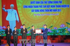 Ninh Binh's Tam Diep city recognised as new-style rural area