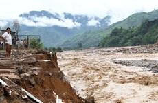 Experts: Deforestation worsening natural-disaster risks