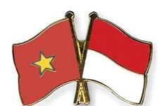 Seminar spotlights Vietnam-Indonesia partnership