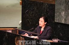 Vietnam calls for UN's comprehensive strategy to maintain peace