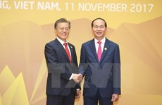 Vietnamese, RoK Presidents exchanged congratulations on ties anniversary