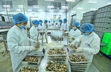 Vietnam's exports likely to hit all-high 212 billion USD this year