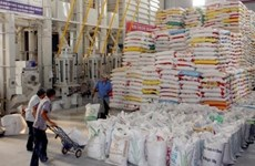 VietGap standards to merit national rice brand