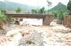 Storm-affected residents in Son La to receive rice aid