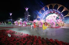Da Lat goes effulgent with 7th flowers festival