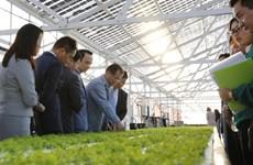 FLC to invest 1.5 billion USD in hi-tech farm