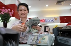 Vietnam's forex reserves soar to record-setting 48 billion USD