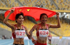 Vietnamese sports sector wins 425 golds in 2017