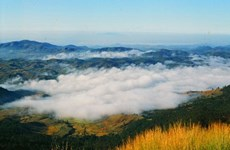 A visit to Langbiang Mountain