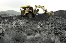 Violations found at Vinacomin: Government Inspectorate