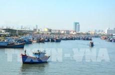 Thanh Hoa works to combat IUU fishing