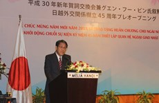 Celebrations of Vietnam-Japan diplomatic ties launched