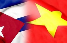 Vietnam keen on fostering traditional solidarity with Cuba: VUFO