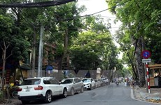 HCM City gets serious about parking