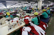 Vinh Long eyes 420 million USD in export revenue