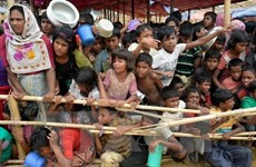Myanmar, Bangladesh push up repatriation of Rohingya refugees