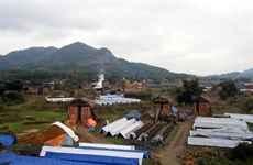 Vietnam seeks to boost environmentally friendly brick production