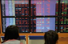 Vietnam's stocks plummet over margin policy