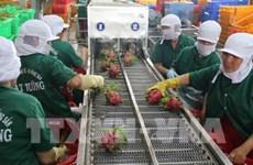 RoK's imports of Vietnamese farm produce soars after 2015 FTA