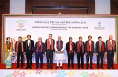 Delhi Declaration of ASEAN-India Commemorative Summit