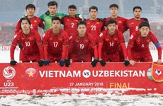 "AFC describes Vietnam as ""penalty kings"" at AFC U-23 Championship"