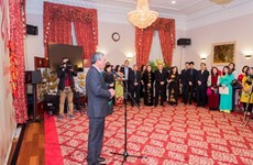 Vietnamese expats in US, UK celebrate Tet