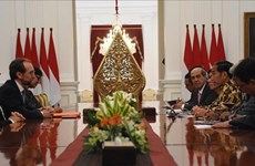 Indonesia pledges to promote human rights