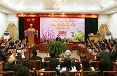 Overseas Vietnamese honoured for contributions to homeland