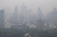 Thailand: Bangkok on alert for air pollution