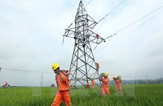 Over 4,100 households of Son La to access power before Tet