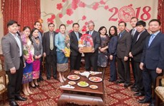 Vietnam, Lao diplomats meet in Washington ahead of Tet