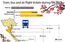 Bus tickets rise again for Tet holiday